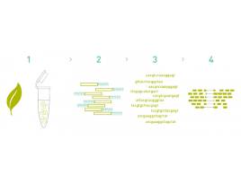 RNA data를 이용한 SNP,Indel analysis